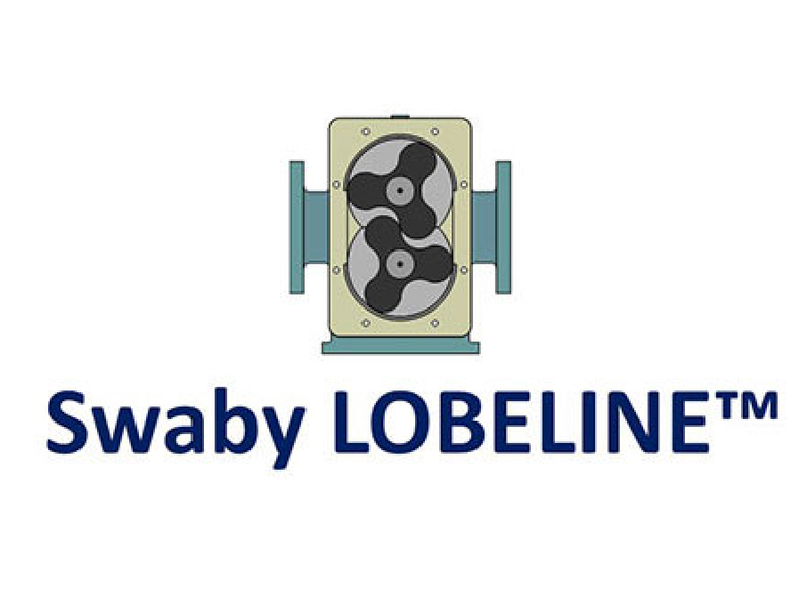 Swaby Lobeline Pumps